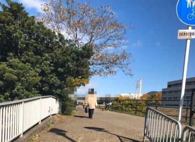 9)歩行者用通路を抜けたら、川沿いを直進します。 府道7号に行き当たりますので、左折し、「洋服の青山」様を過ぎるまで進みます。