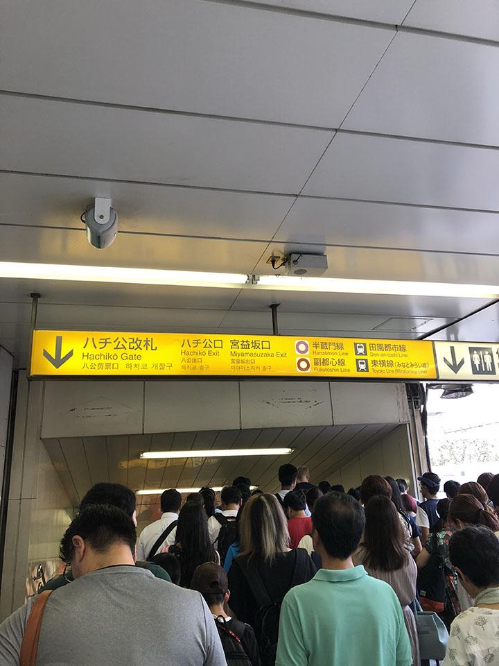 JR渋谷駅ハチ公口を出ます。